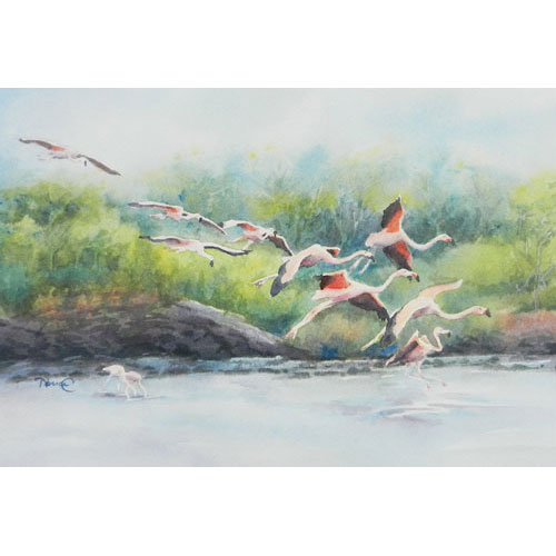 Painting of wild flamingos flying in for a landing on the Galapagos Islands.